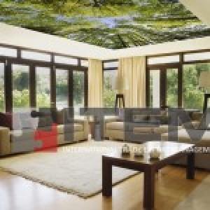 Oturma odasında tematik orman baskılı gergi tavan uygulaması