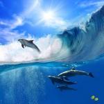 gergi-tavan-gorsel-deniz (1)