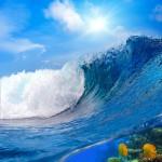 gergi-tavan-gorsel-deniz (14)