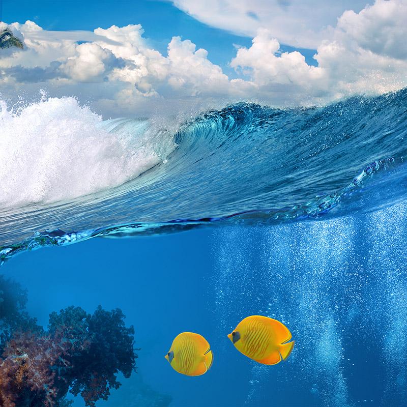 gergi-tavan-gorsel-deniz (17)