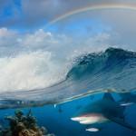 gergi-tavan-gorsel-deniz (22)