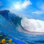 gergi-tavan-gorsel-deniz (25)