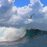 gergi-tavan-gorsel-deniz (3)