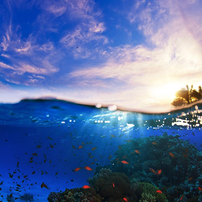 gergi-tavan-gorsel-deniz (49)