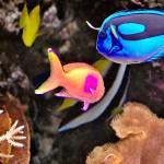 gergi-tavan-gorsel-deniz (64)