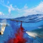 gergi-tavan-gorsel-deniz (9)