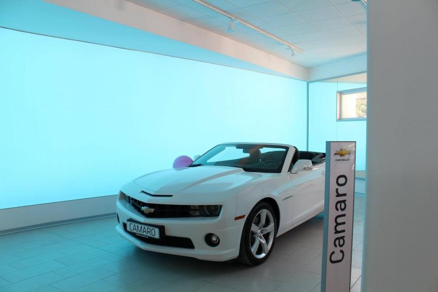 oto-galeri-showroom-gergi-tavan1 (2)
